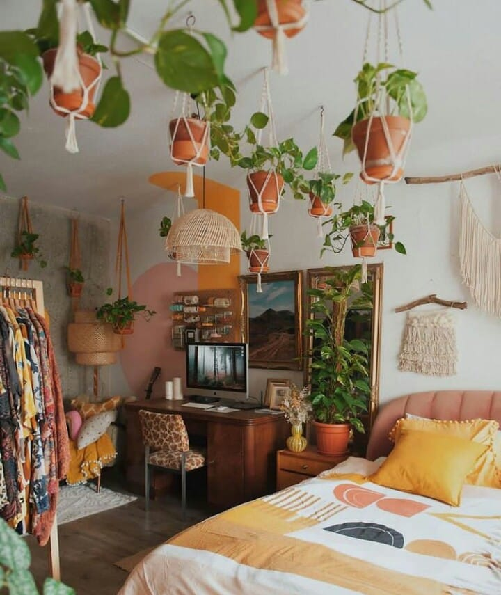 10 Best Plants To Have In Bedroom For Better Sleep